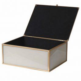 Giraffe Glass Box